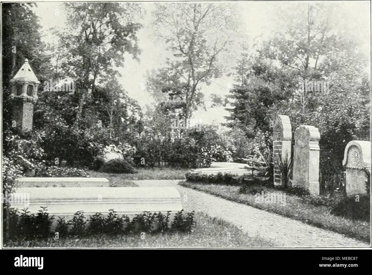 Die Gartenkunst . Friedhofsteil Zwischen Allen Bäunitii Aul Dem  .Muiiciituer Waldfriedhof.