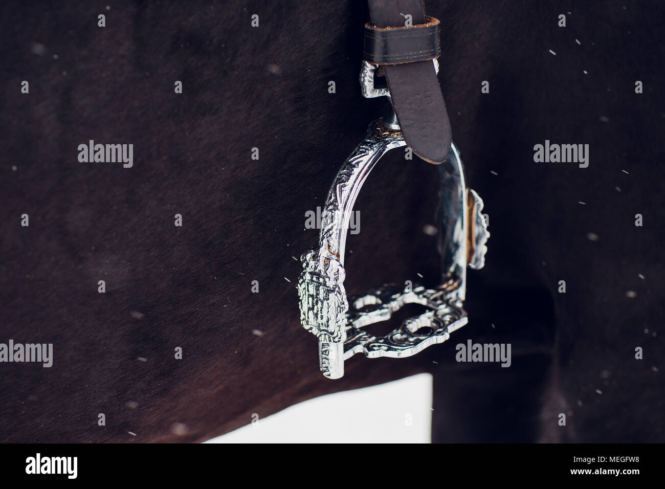 English saddle stirrup baroque type leathers and fender closeup - horseback riding saddle for sale - Stock Image