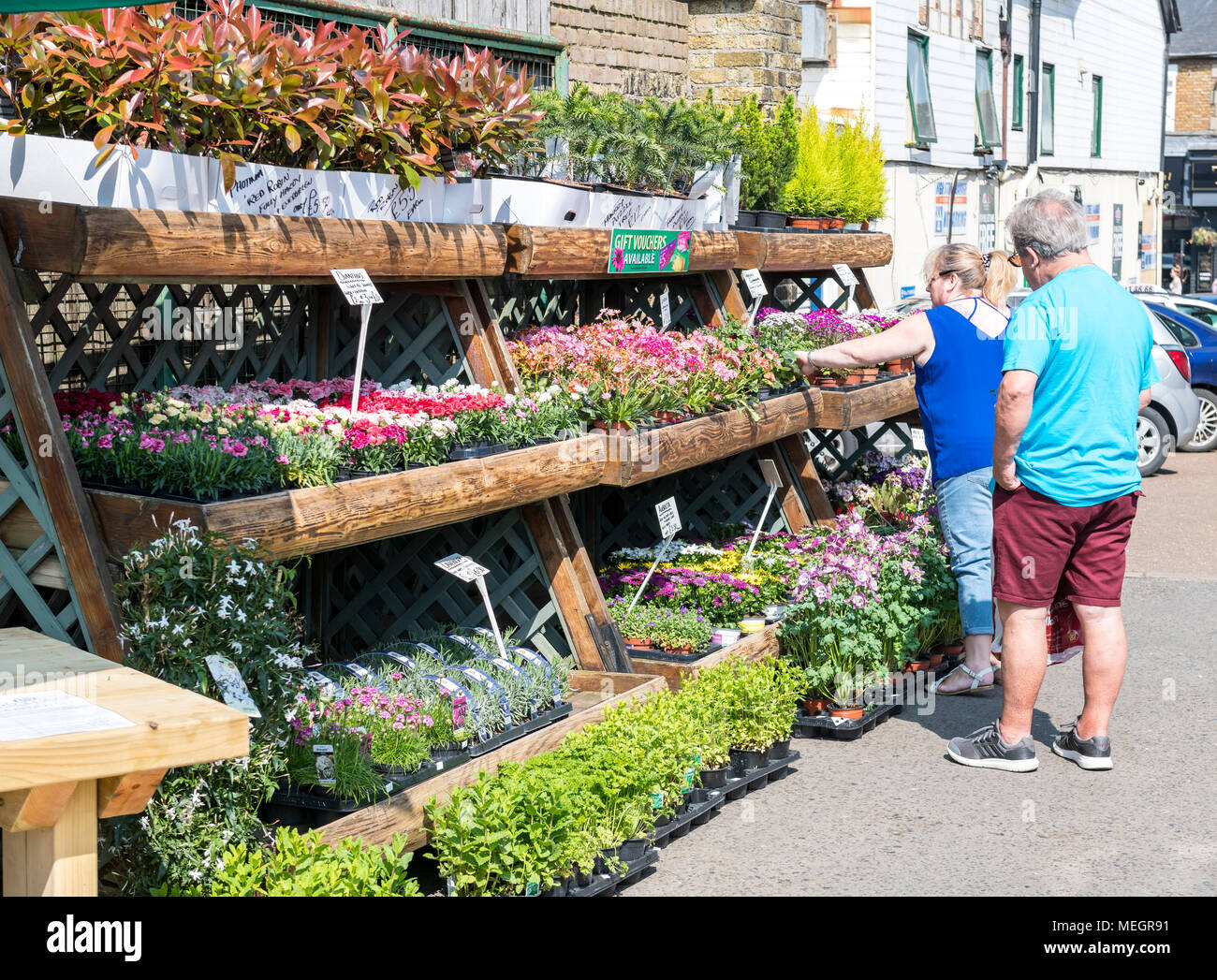 Couple Selecting Plants At A Garden Centre   Stock Image