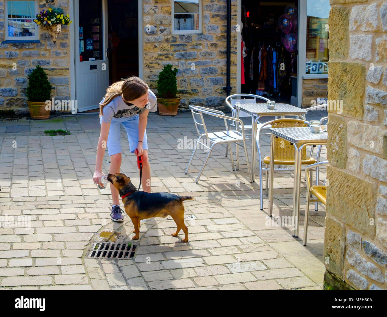 A young woman giving a pet dog a drink of water from a plastic bottle on a hot day in Yorkshire - Stock Image