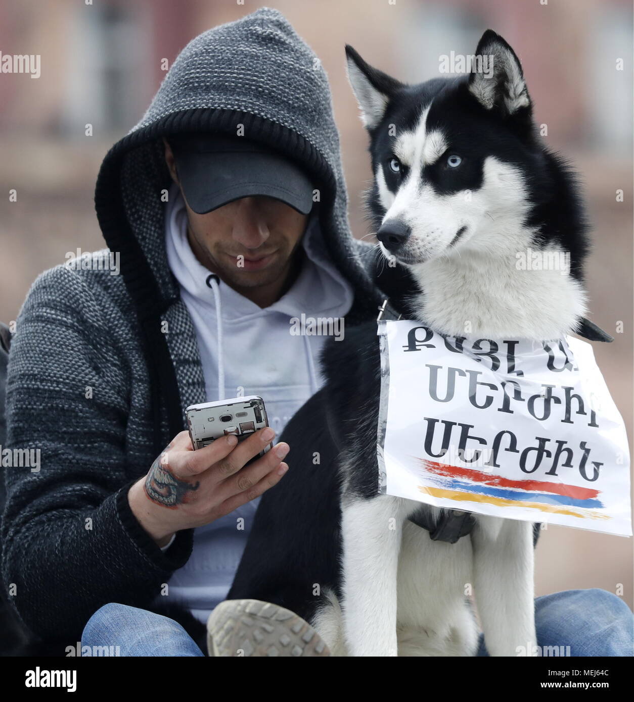 Yerevan, Armenia. 21st Apr, 2018. YEREVAN, ARMENIA - APRIL 21, 2018: A man and a dog during a protest against the election of former Armenian President Sargsyan as Prime Minister; Serzh Sargsyan has been elected Prime Minister by the National Assembly of Armenia. Artyom Geodakyan/TASS Credit: ITAR-TASS News Agency/Alamy Live News - Stock Image