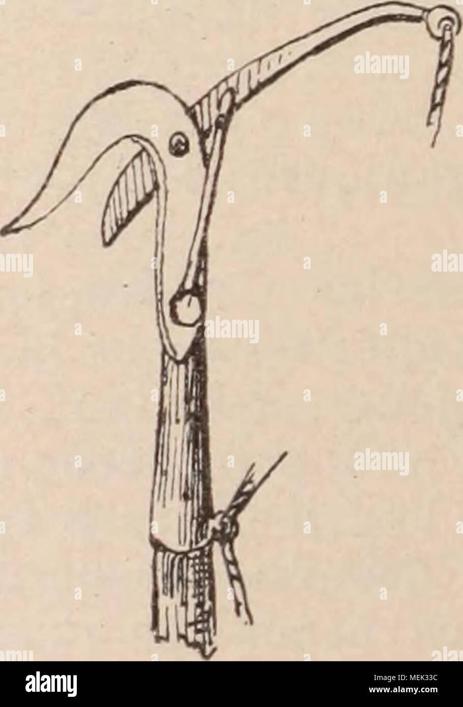. Dictionnaire d'horticulture illustré / par D. Bois  préface de Maxime Cornu  avec la collaboration de E. André ... [et al.]. . Fig. 322. â ECHENILLOIR. Les Echenilloirs servent non-seulement à couper les branches portant des nids de che- nilles, mais aussi à récolter des greffons, et même, au besoin, à tailler ou supprimer des branches éloignées et hors de la portée des échelles. L. H. - Stock Image