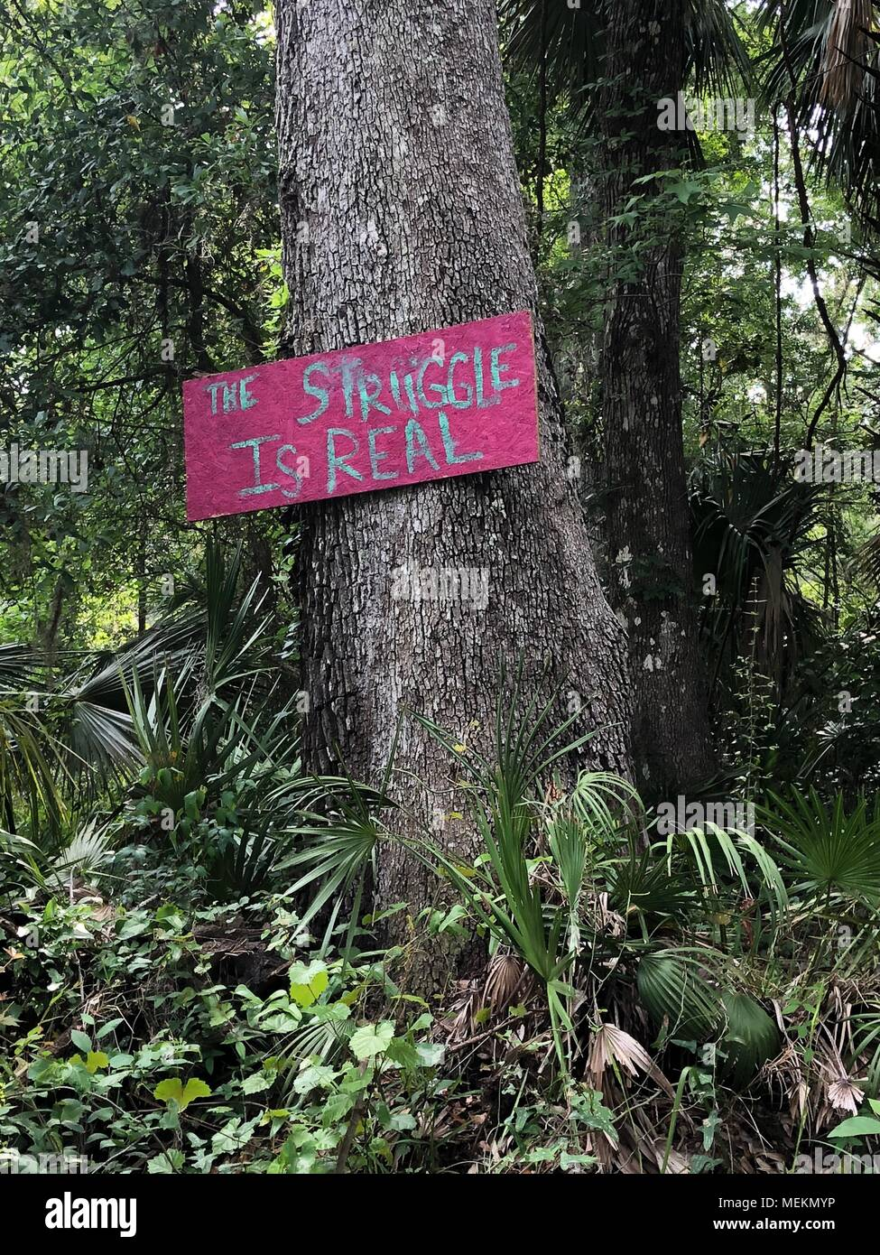 A sign in a poverty stricken, rural area of Florida reads: 'The Struggle Is Real' - Stock Image