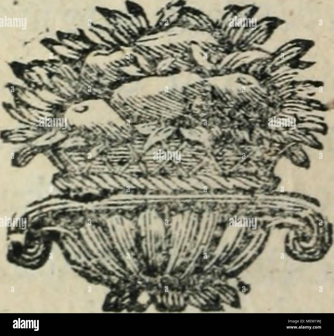 . Dictionnaire pour la théorie et la pratique du jardinage, et de l'agriculture, par principes, et démontrées d'après la physique des végetaux . - Stock Image