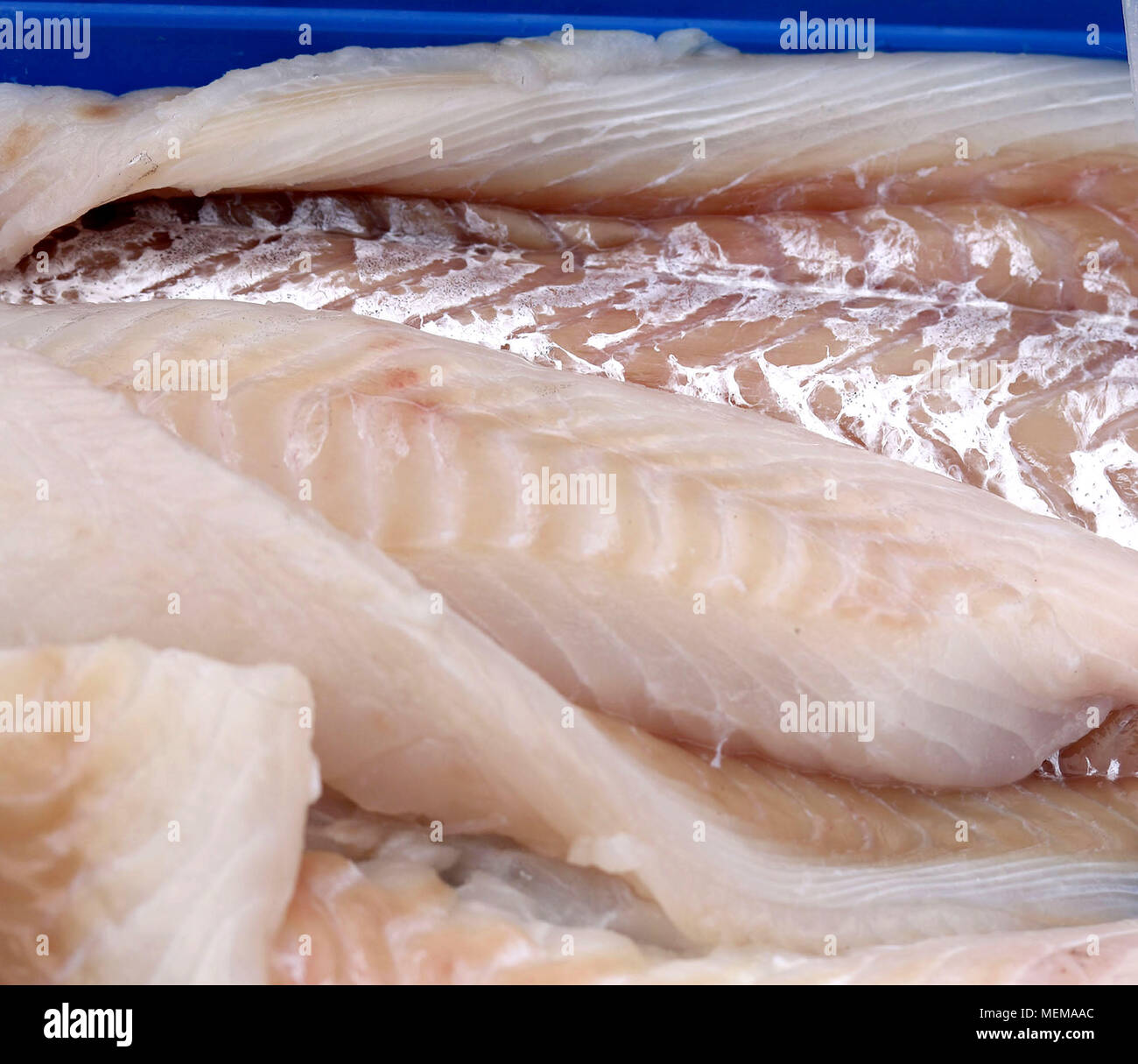 A pile of cod fish at the fish market Stock Photo: 181156036