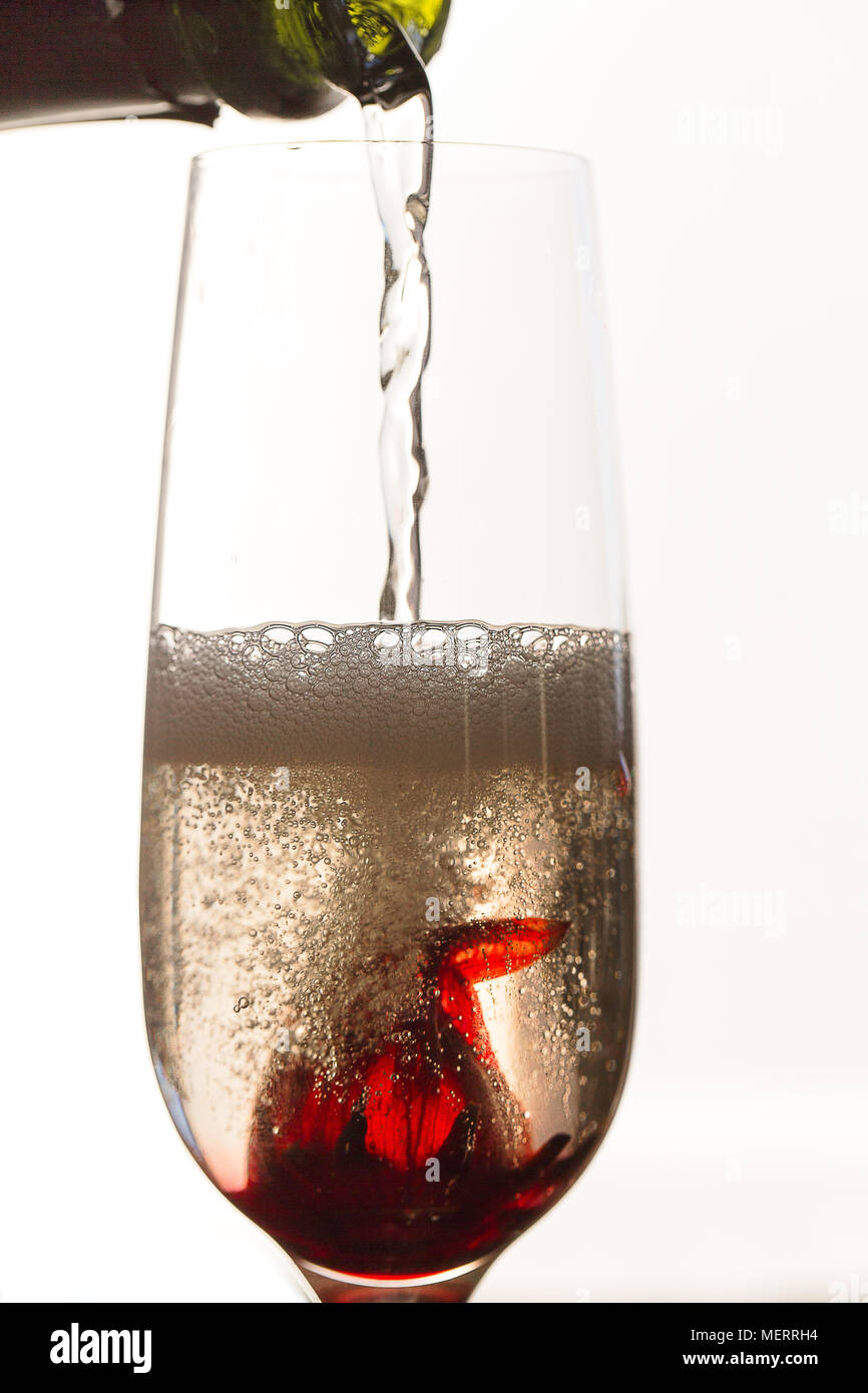 Pouring sparkling white wine over Hibiscus flower in glass - Stock Image