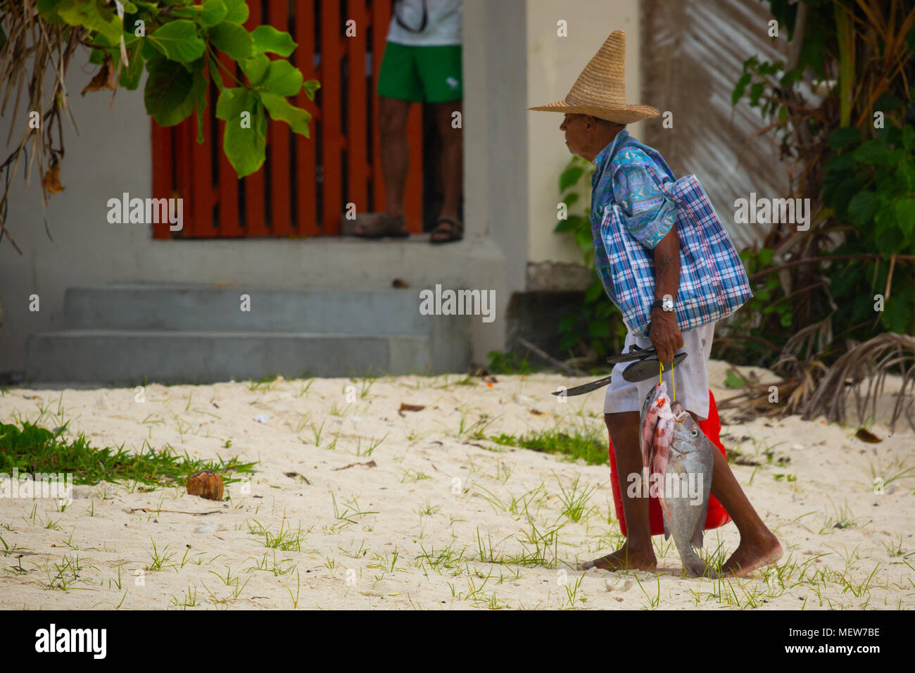Seychelles- fisherman coming back hope with fish - Stock Image