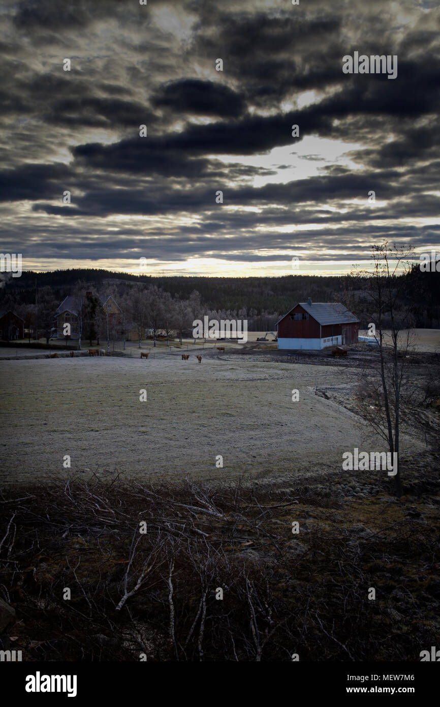 Frost covered rural landscape under a cloudy sky in Anundsjoe, Sweden. - Stock Image