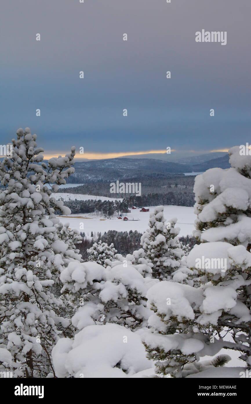 View from Ögeltjärnsberget over the Baltic Sea. Höga Kusten near Örnsköldsvik, Sweden. - Stock Image