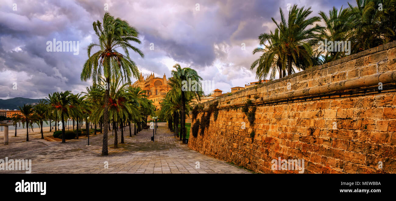 Panoramic view of the palm tree garden and La Seu Cathedral in Plama de Mallorca, Majorca island, Spain, on dramatic stormy evening - Stock Image