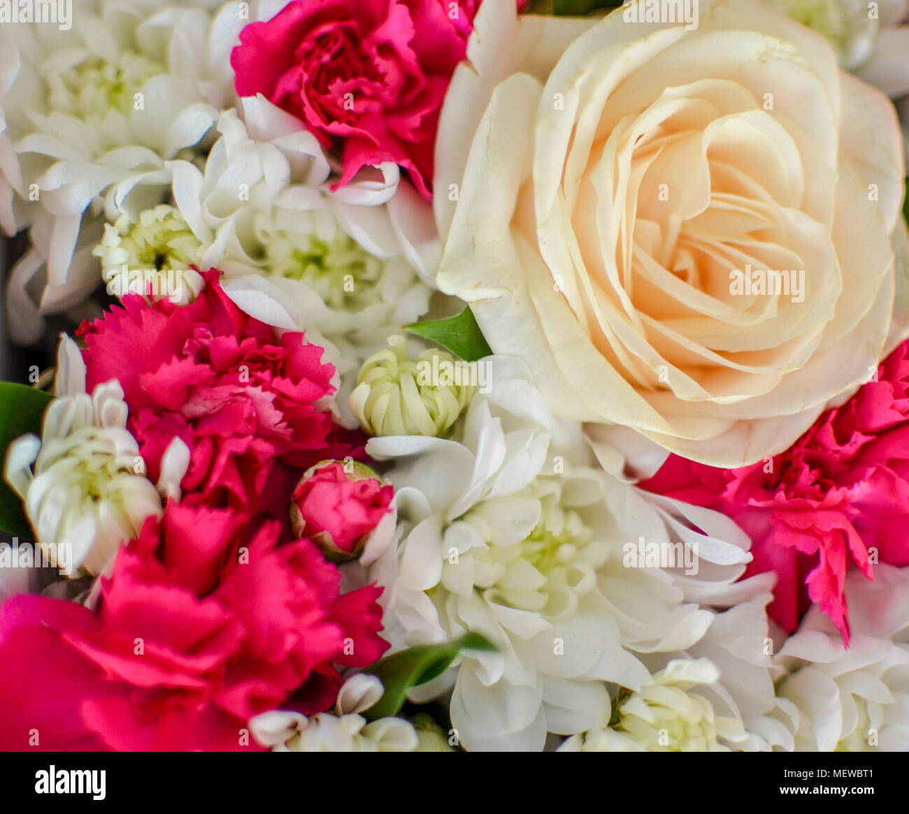 Beautiful bouquet of mixed flowers of chrysanthemums cloves and beautiful bouquet of mixed flowers of chrysanthemums cloves and roses background on full screen in a box izmirmasajfo