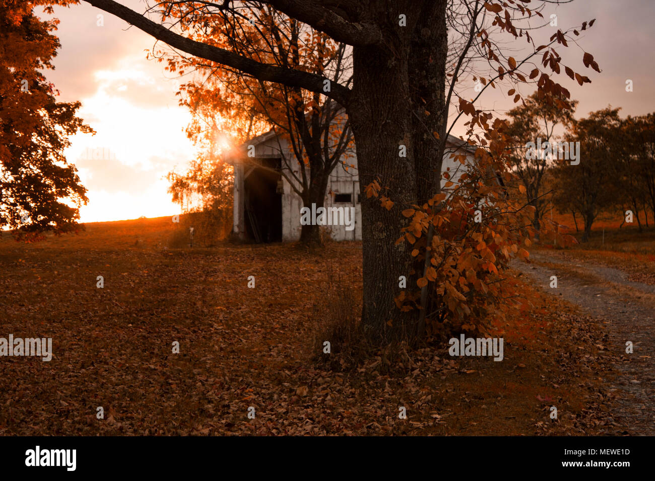 Setting sun behind a barn in the country on a fall evening with rays of sunlight Stock Photo