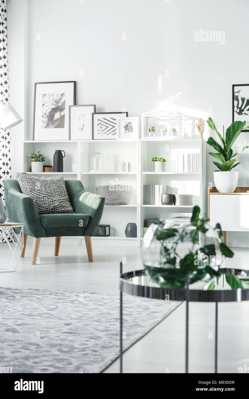 Green armchair with black and white pillow standing in bright living ...