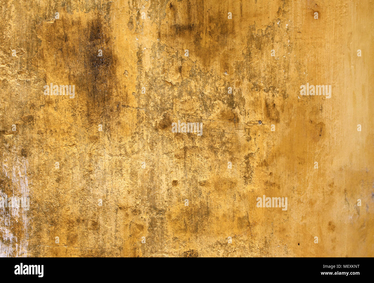Grunge background with old stucco wall texture of yellow color Stock ...