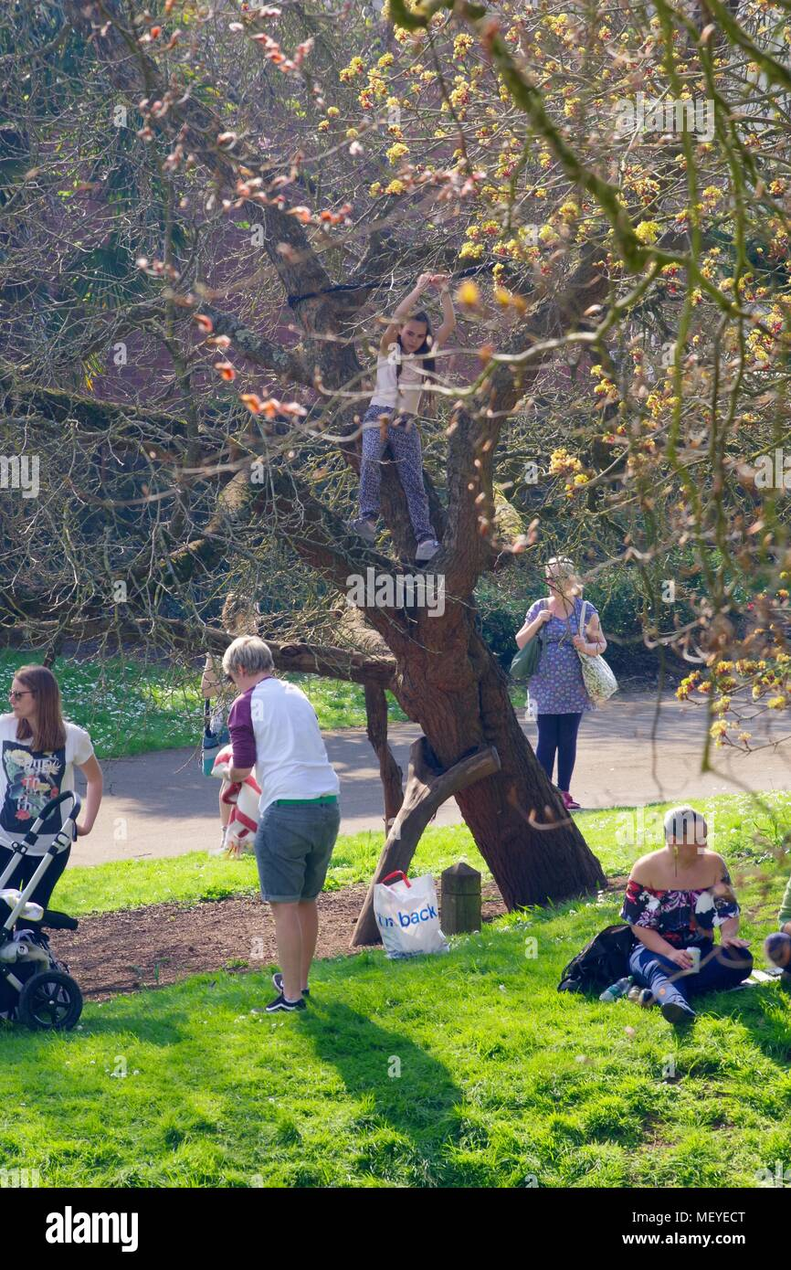 Child in a Tree During RAMM's Carnival of the Animals Anniversary. Rougemont Gardens, Exeter, Devon, UK. April, 2018. - Stock Image