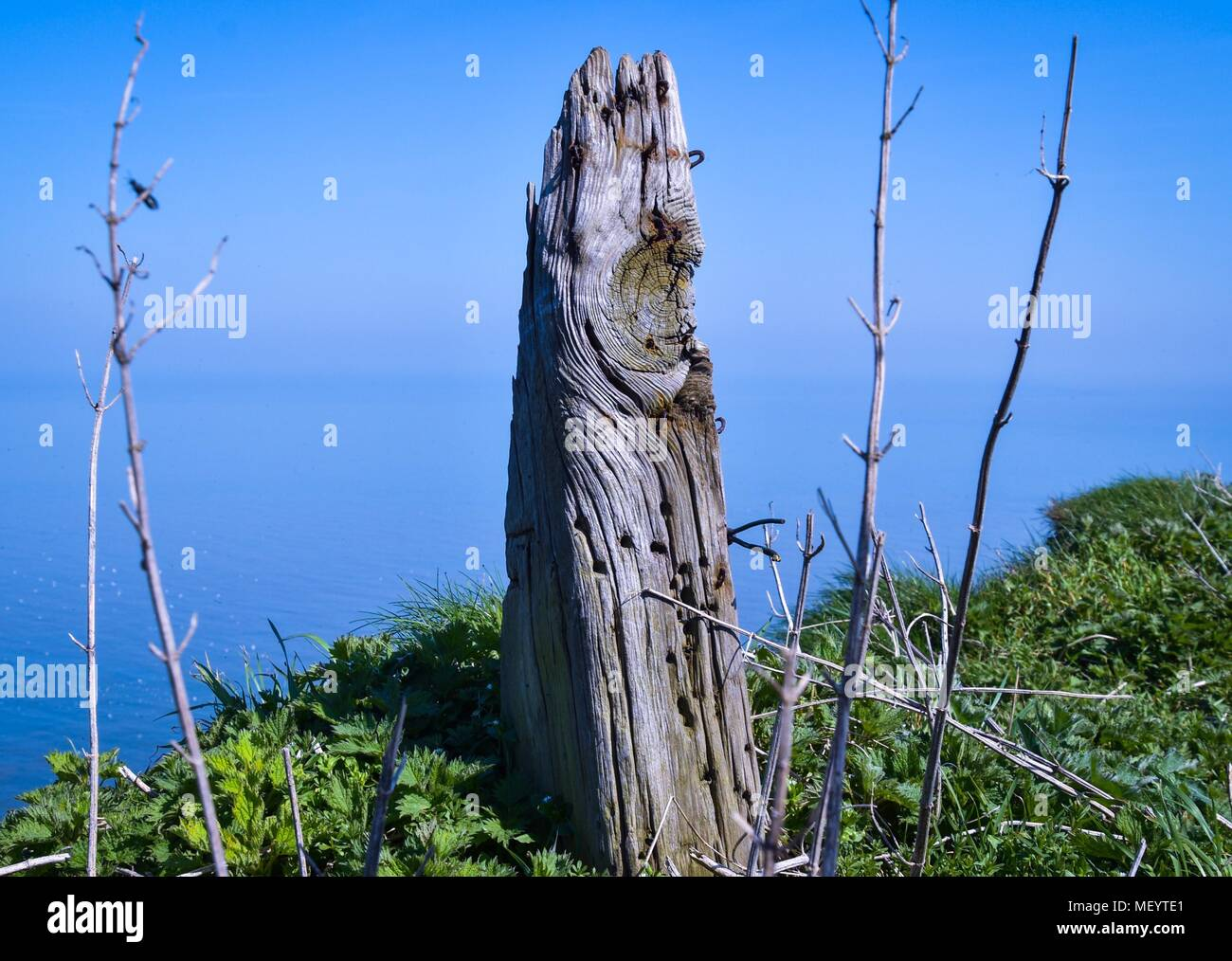 Old Fence Post on the Cliff Edge - Stock Image