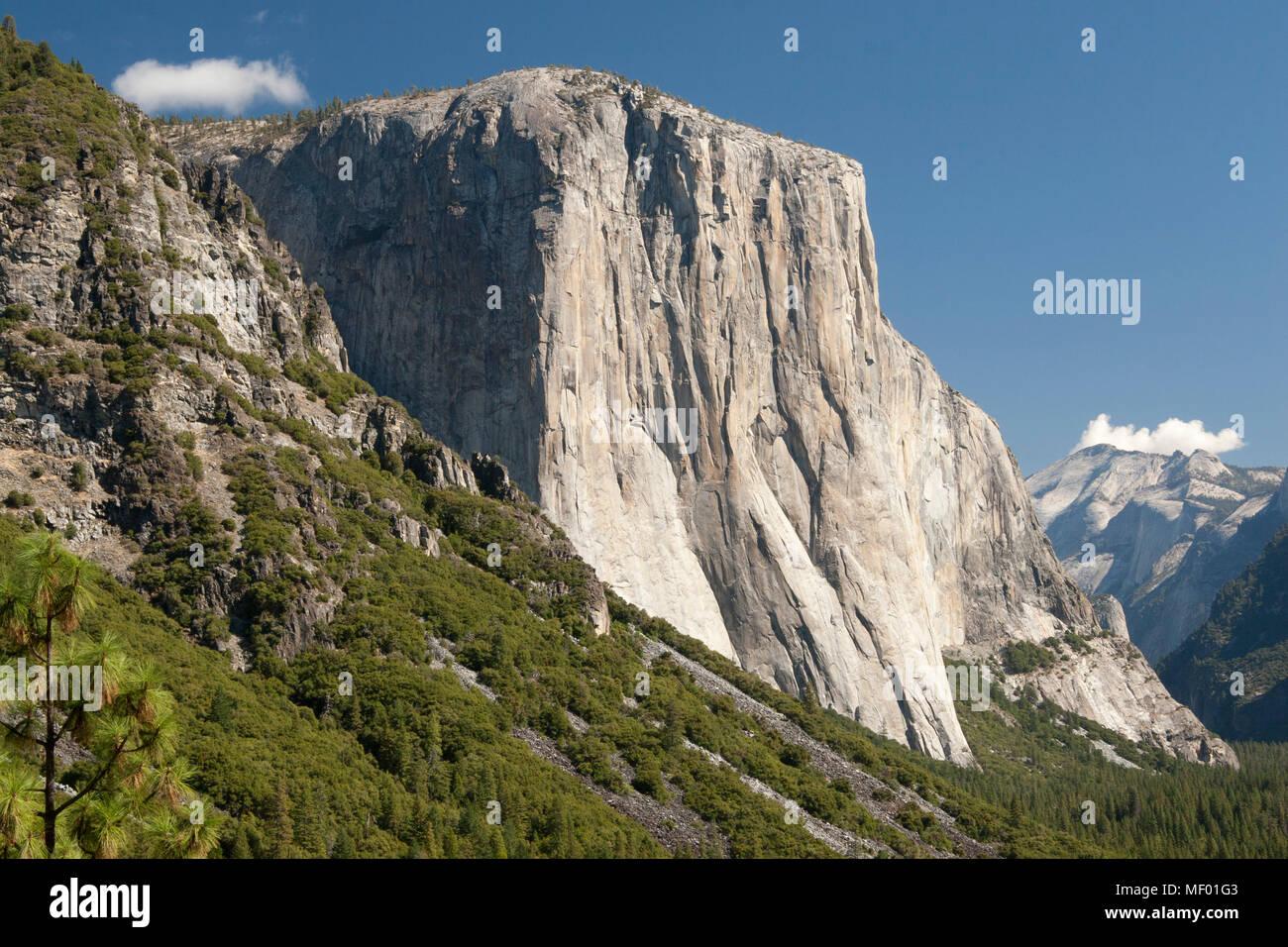 El Capitan in the Yosemite Valley National Park, California, USA Stock Photo