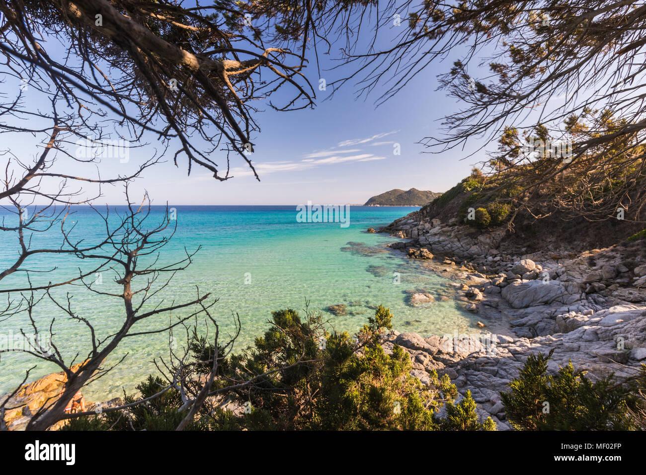 The mediterranean vegetation frames the turquoise sea of Cala Monte Turno Castiadas Cagliari Sardinia Italy Europe - Stock Image