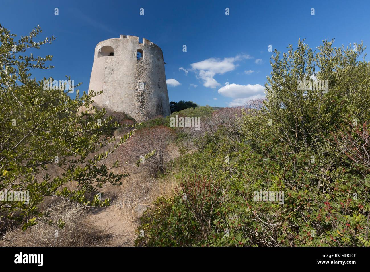 The vegetation of inland surrounds the tower Cala Pira Castiadas Cagliari Sardinia Italy Europe - Stock Image