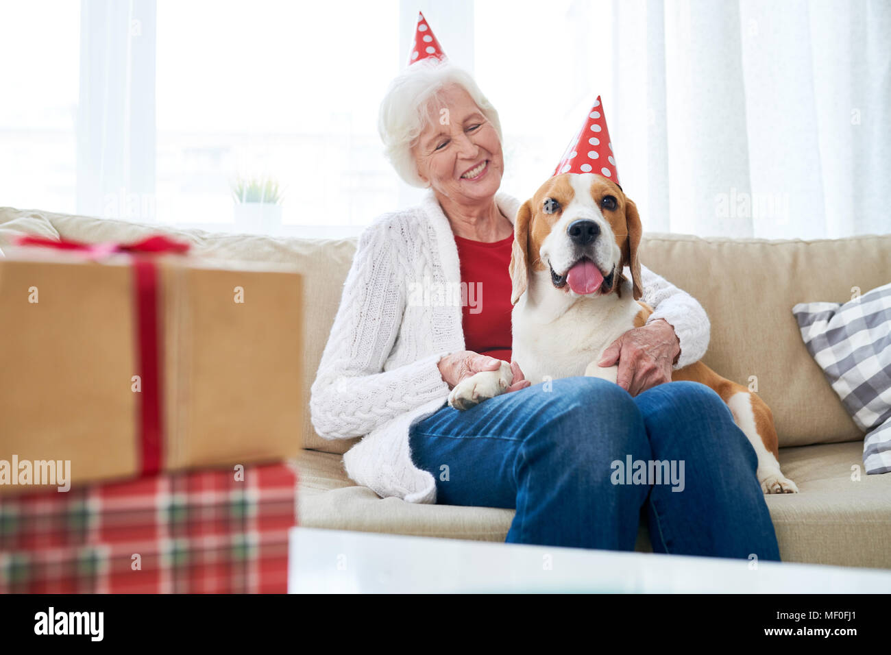 Joyful birthday party with dog - Stock Image