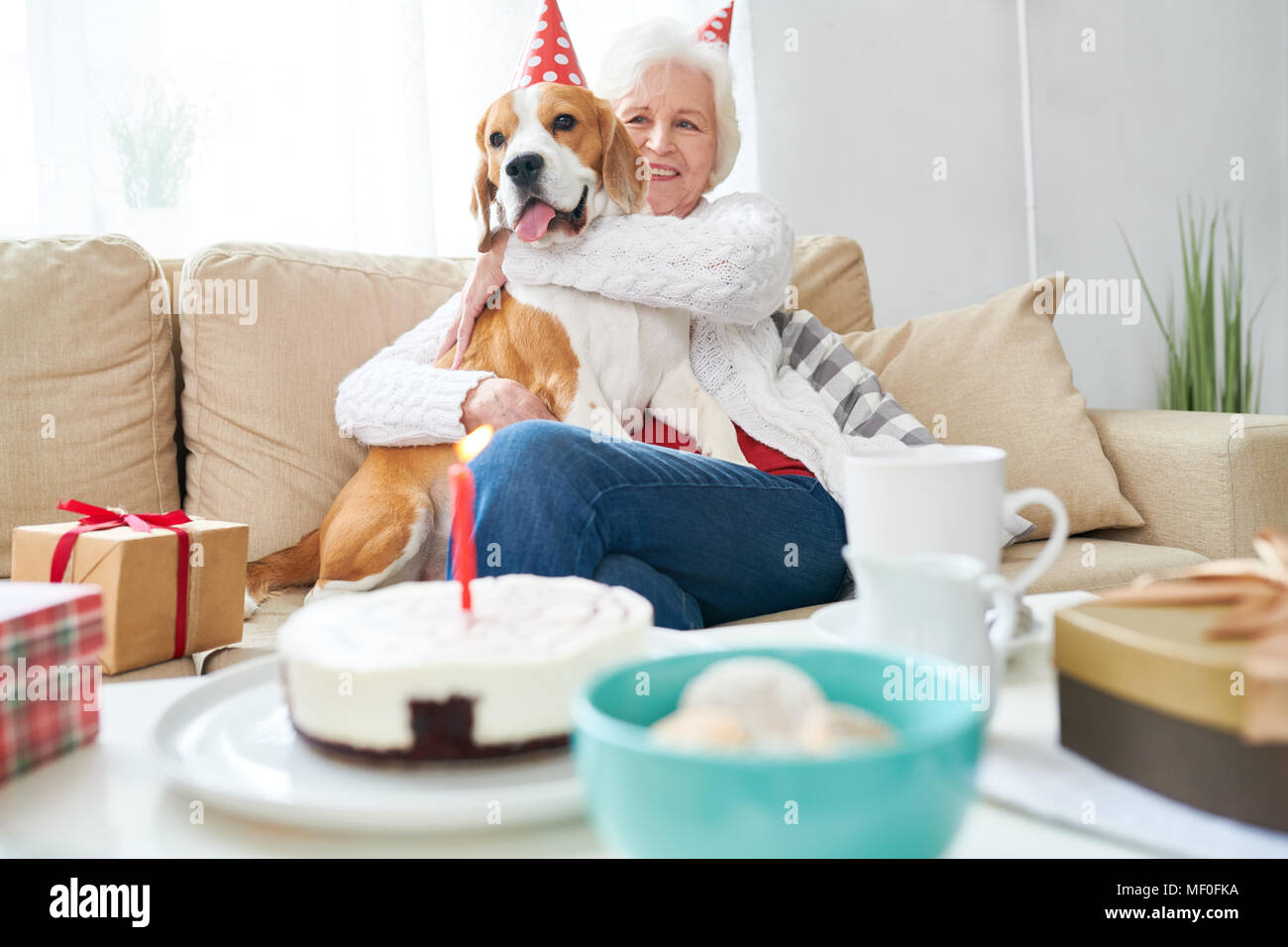 Excited senior owner celebrating dogs party - Stock Image