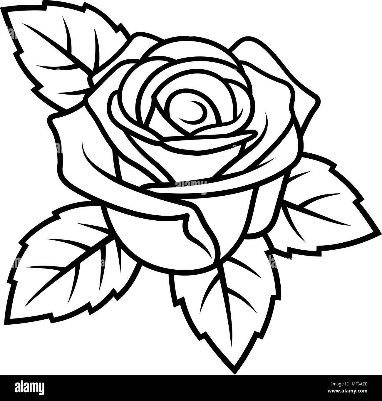 Sketch Of Rose Isolated On White Background. Use For