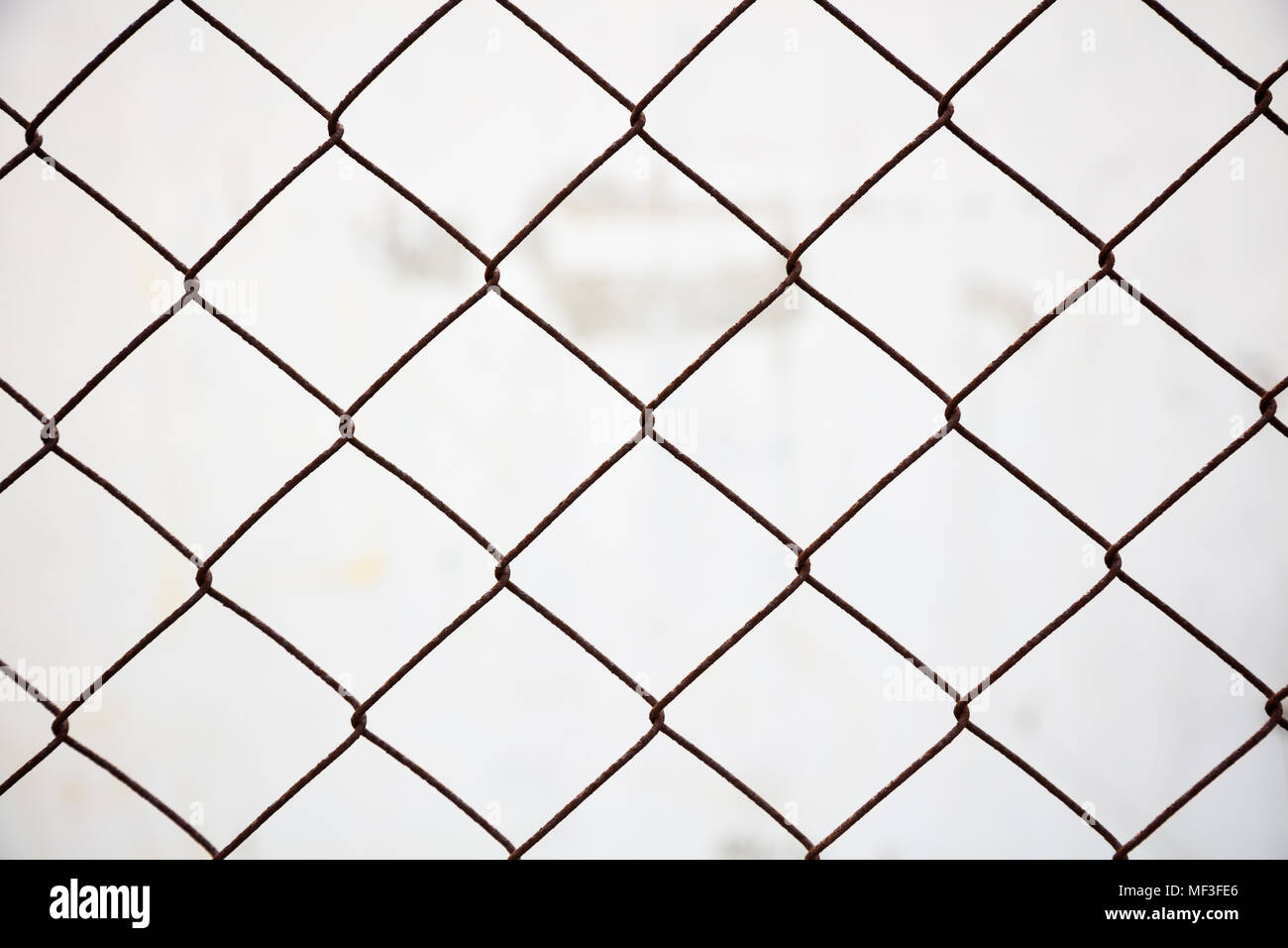 Wire Mesh Cage Stock Photos & Wire Mesh Cage Stock Images - Alamy