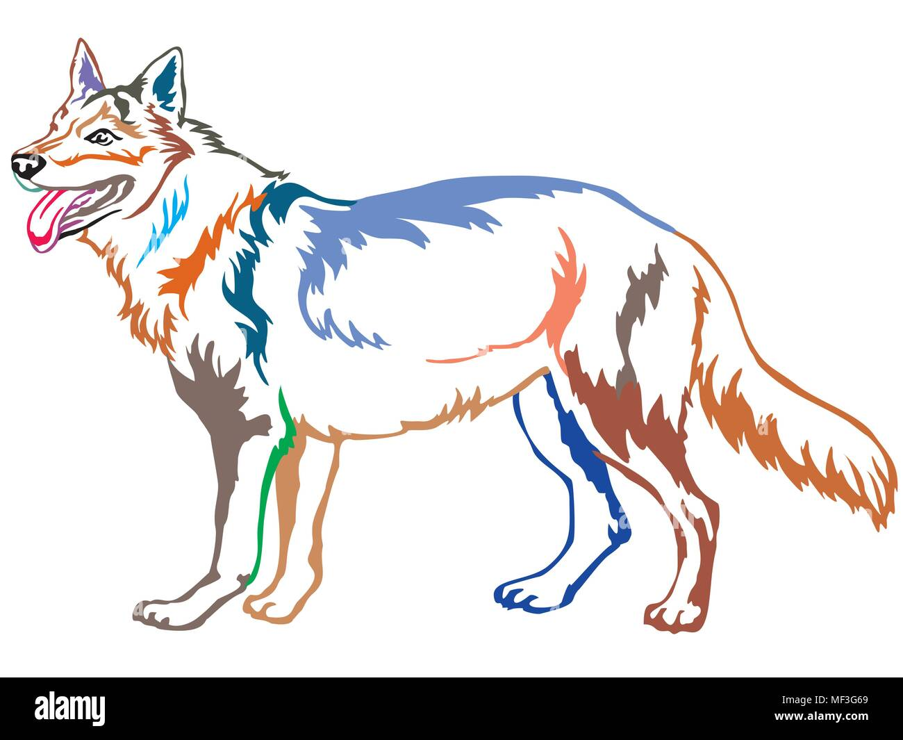 Colorful contour decorative portrait of standing in profile Czechoslovakian Wolfdog, vector isolated illustration on white background - Stock Image