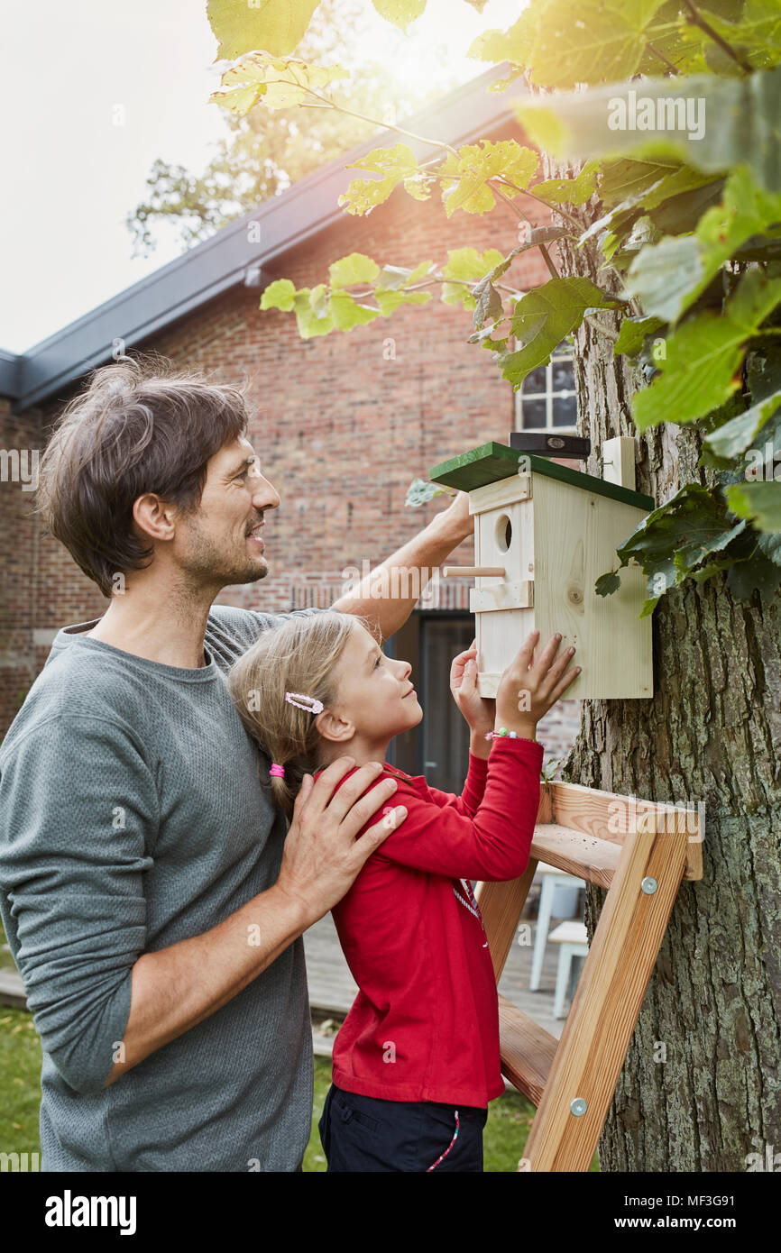 Father and daughter hanging up nest box in garden - Stock Image