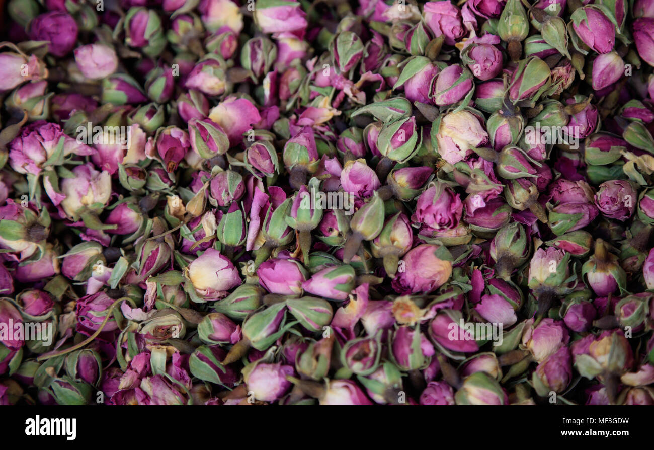 Roses pink, dried on heap. Antioxidant and healthy rosebuds for background. Close up view with details. Top view - Stock Image