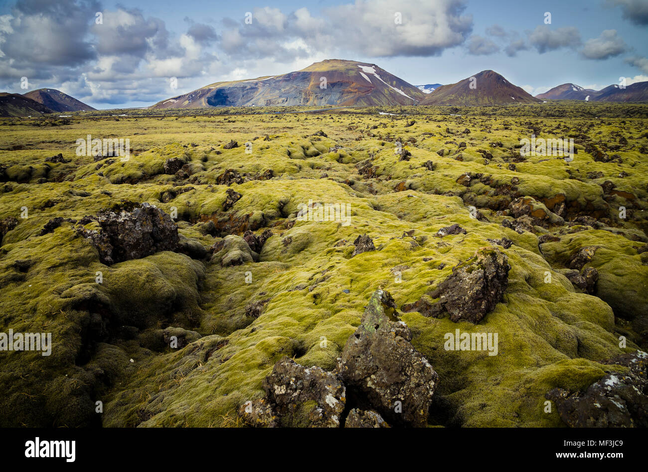 Iceland, South of Iceland, moss-grown volcanic rock - Stock Image