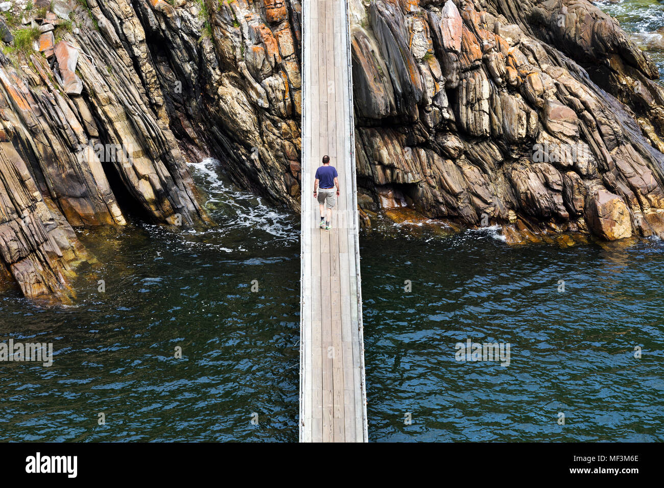 Africa, South Africa, Western Cape, Paarl, Garden Route National Park, Tsitsikamma National Park, man walking on wooden bridge - Stock Image
