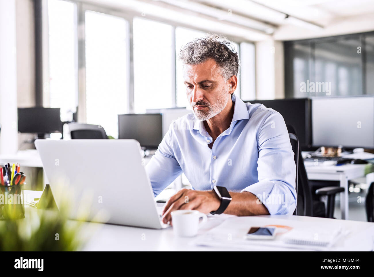 Mature businessman sitting at desk in office using laptop - Stock Image