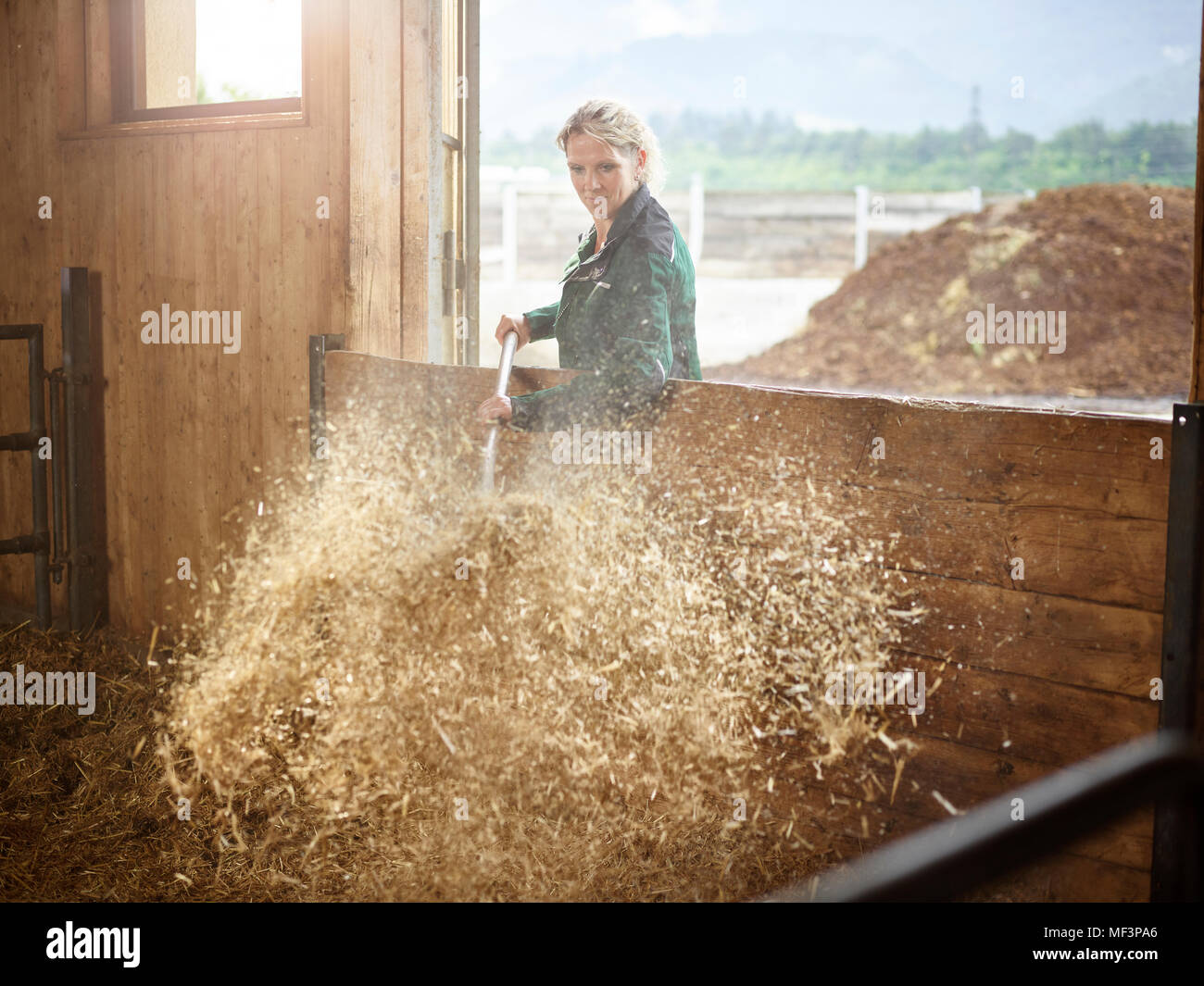 Female farmer working with straw on a farm - Stock Image