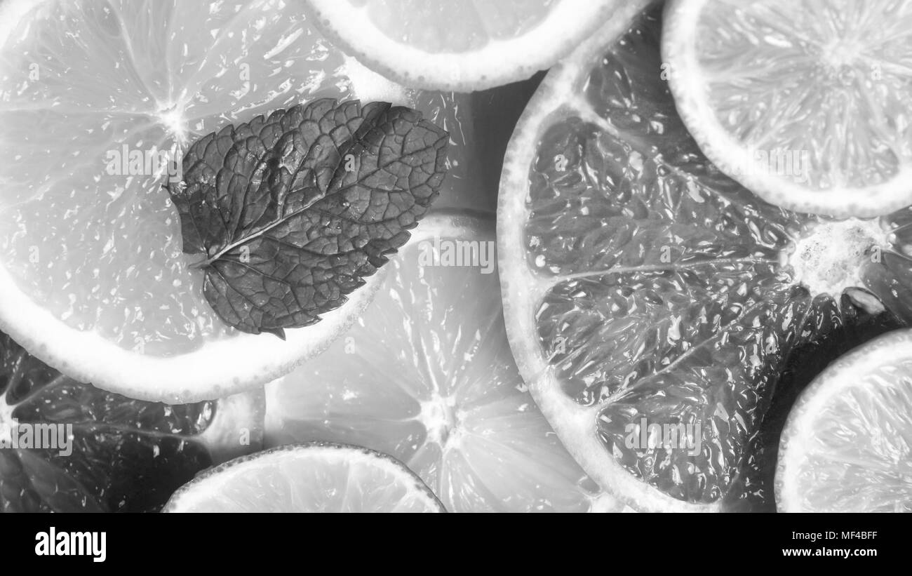 Black and white closeup image of cut oranges, grapfruits and lemons - Stock Image