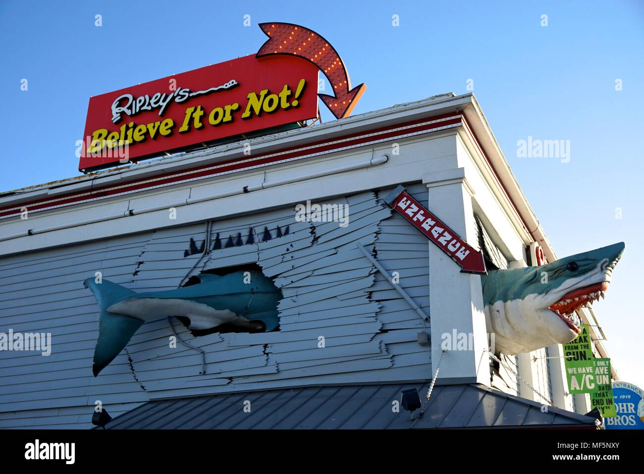 Ripley's Believe it or Not in Ocean City, Maryland - Stock Image