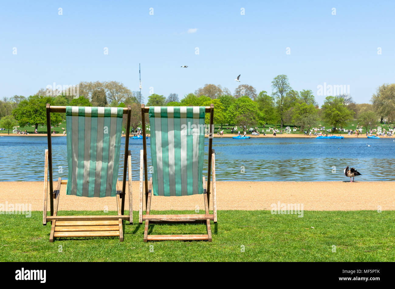 Sun deck chairs by the Serpentine River at Hyde Park, London - Stock Image
