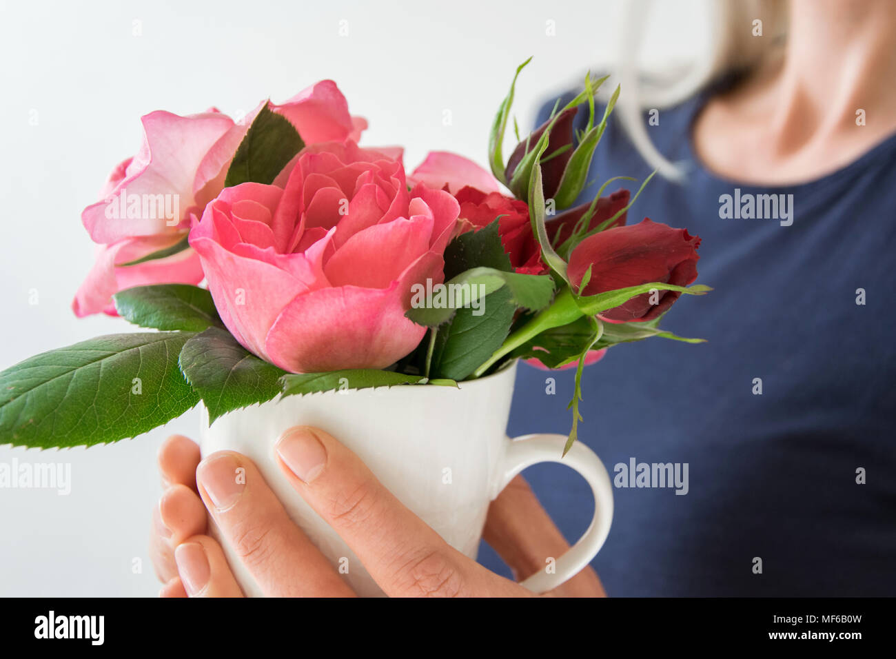 Beautiful Romantic Girl Holds Rose Stock Photos Beautiful Romantic