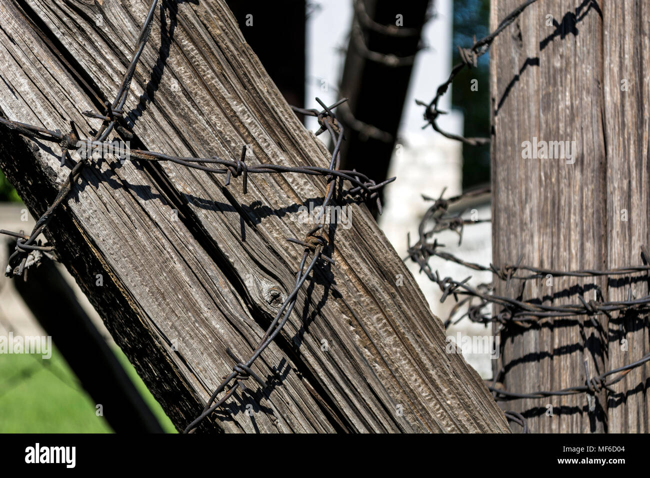 NIS, SERBIA - APRIL 21, 2018: Barbed wire on old wooden beam. Selective focus, close up - Stock Image