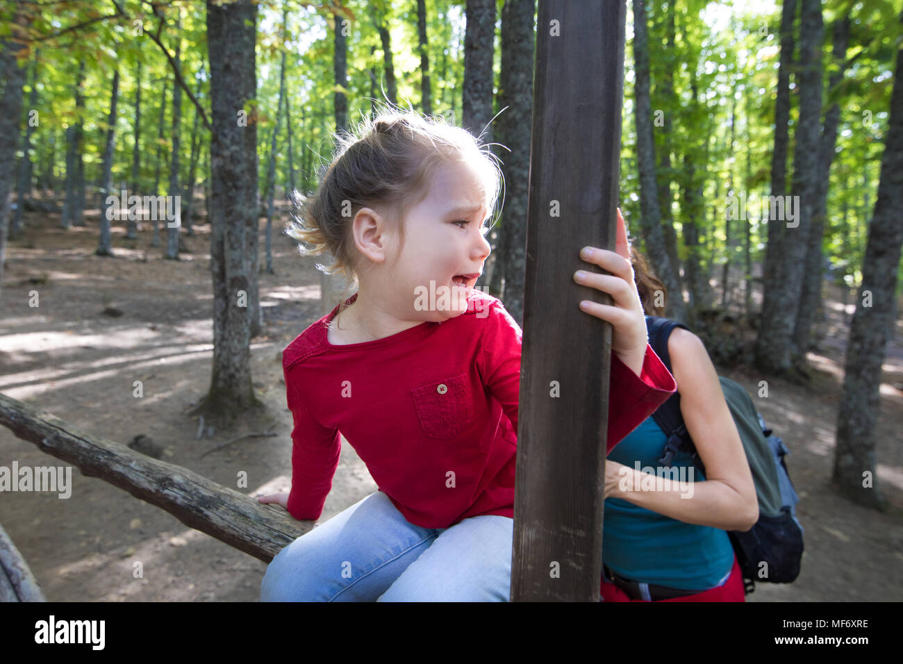 four years age blonde child with red shirt sitting on wooden fence, looking back and screaming with scary face to mother, in forest of chestnut trees  - Stock Image
