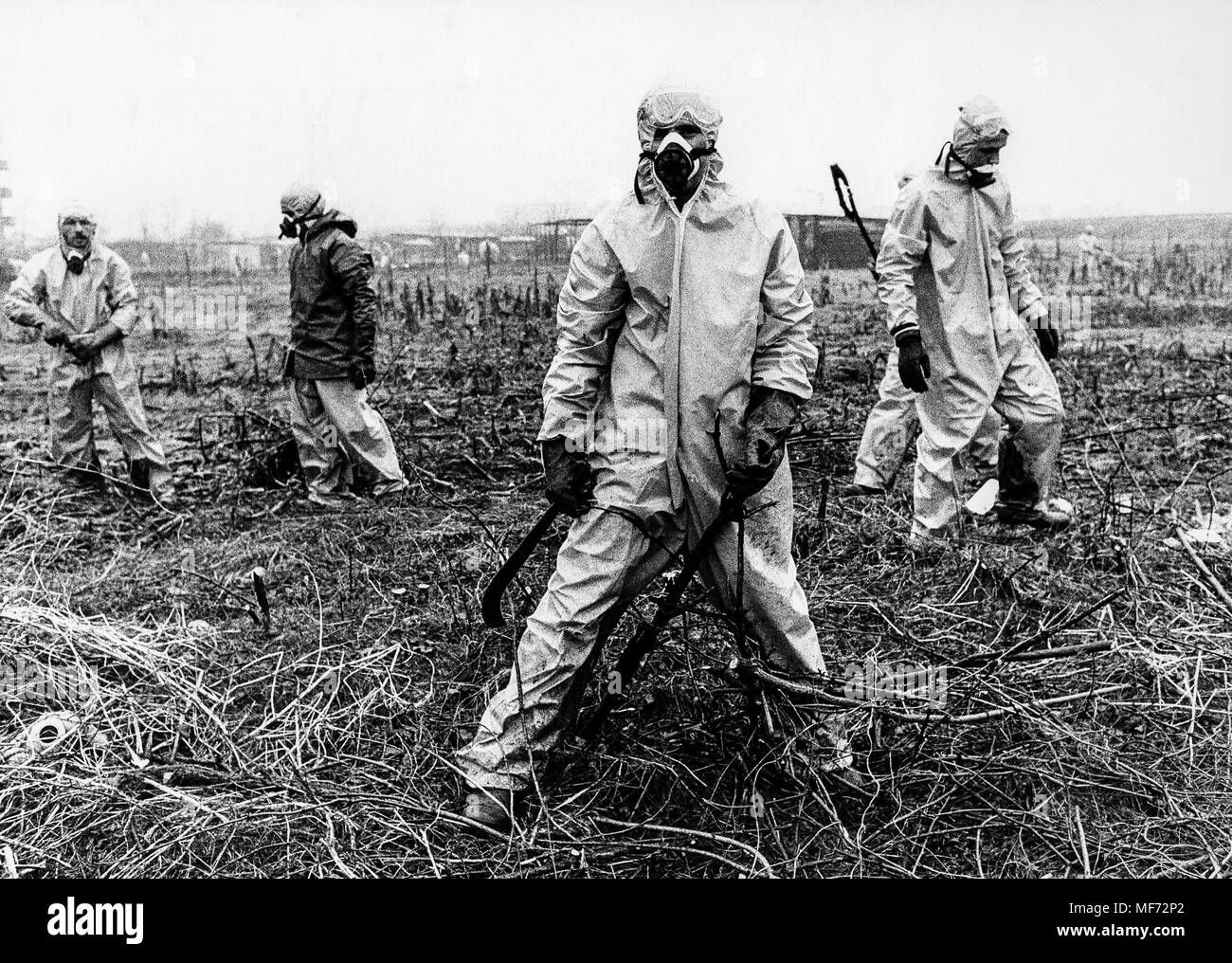 seveso, ecological disaster after the explosion chemistry plant, 1976 Stock Photo