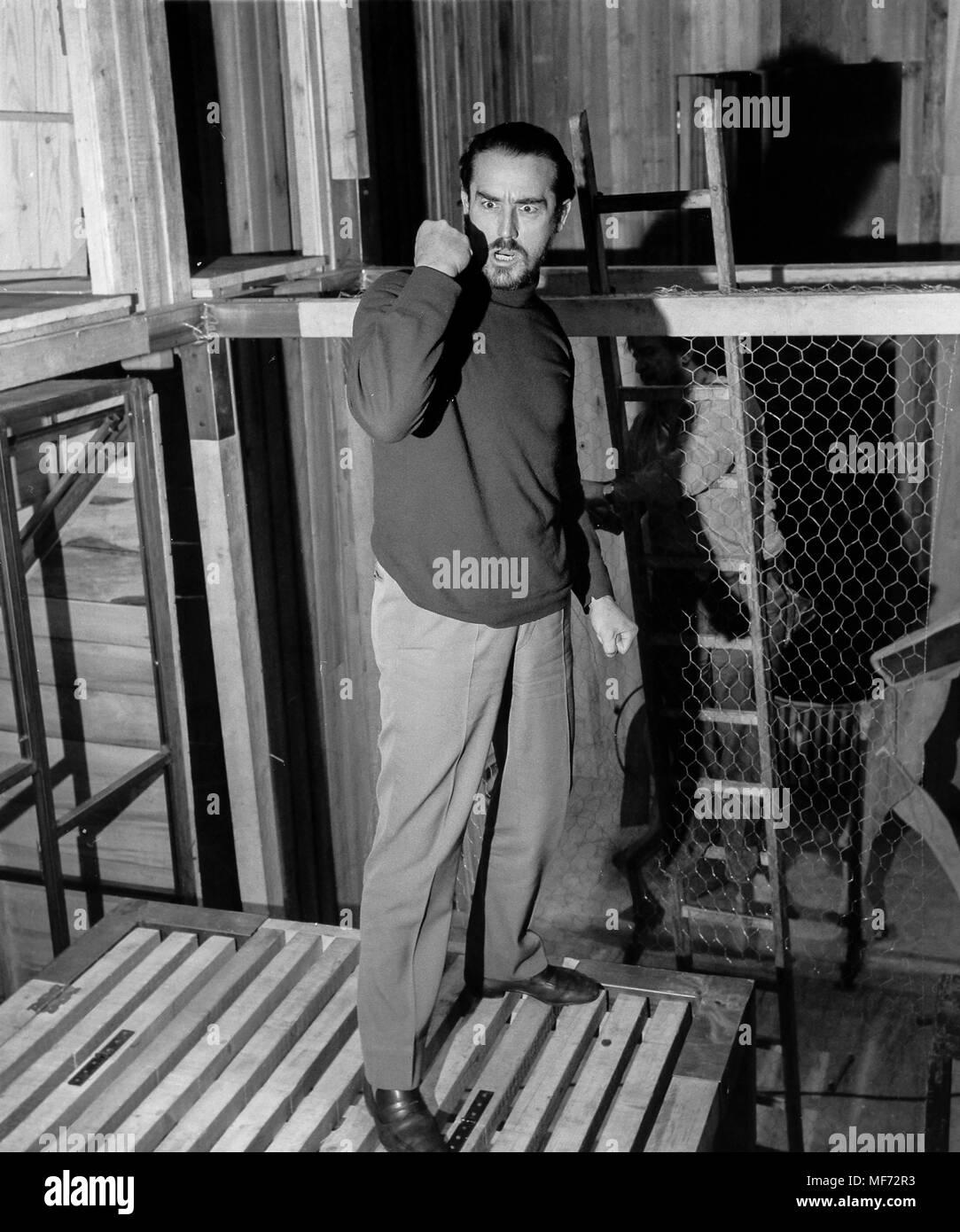 vittorio gassman, 60s - Stock Image