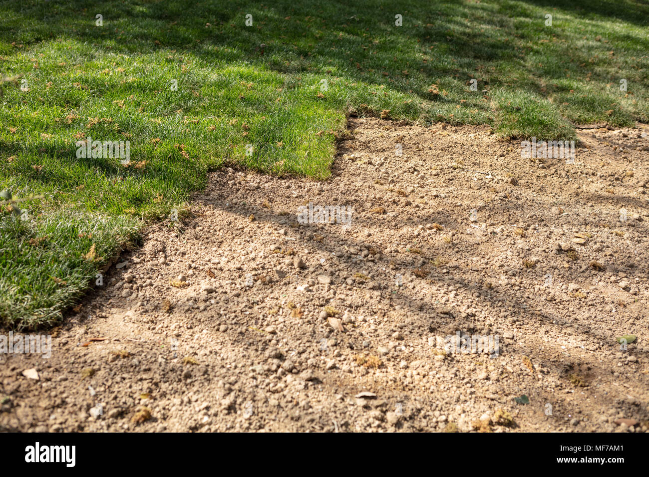 an area of ground will cover with freshly laid grass stock photo
