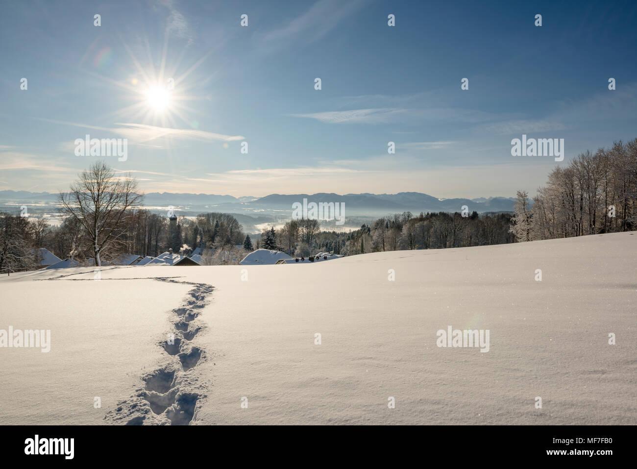 Winterlandschaft, Spuren im Schnee, Blick vom Schlossberg Eurasburg auf Loisachtal, Eurasburg, Oberbayern, Bayern, Deutschland Stock Photo