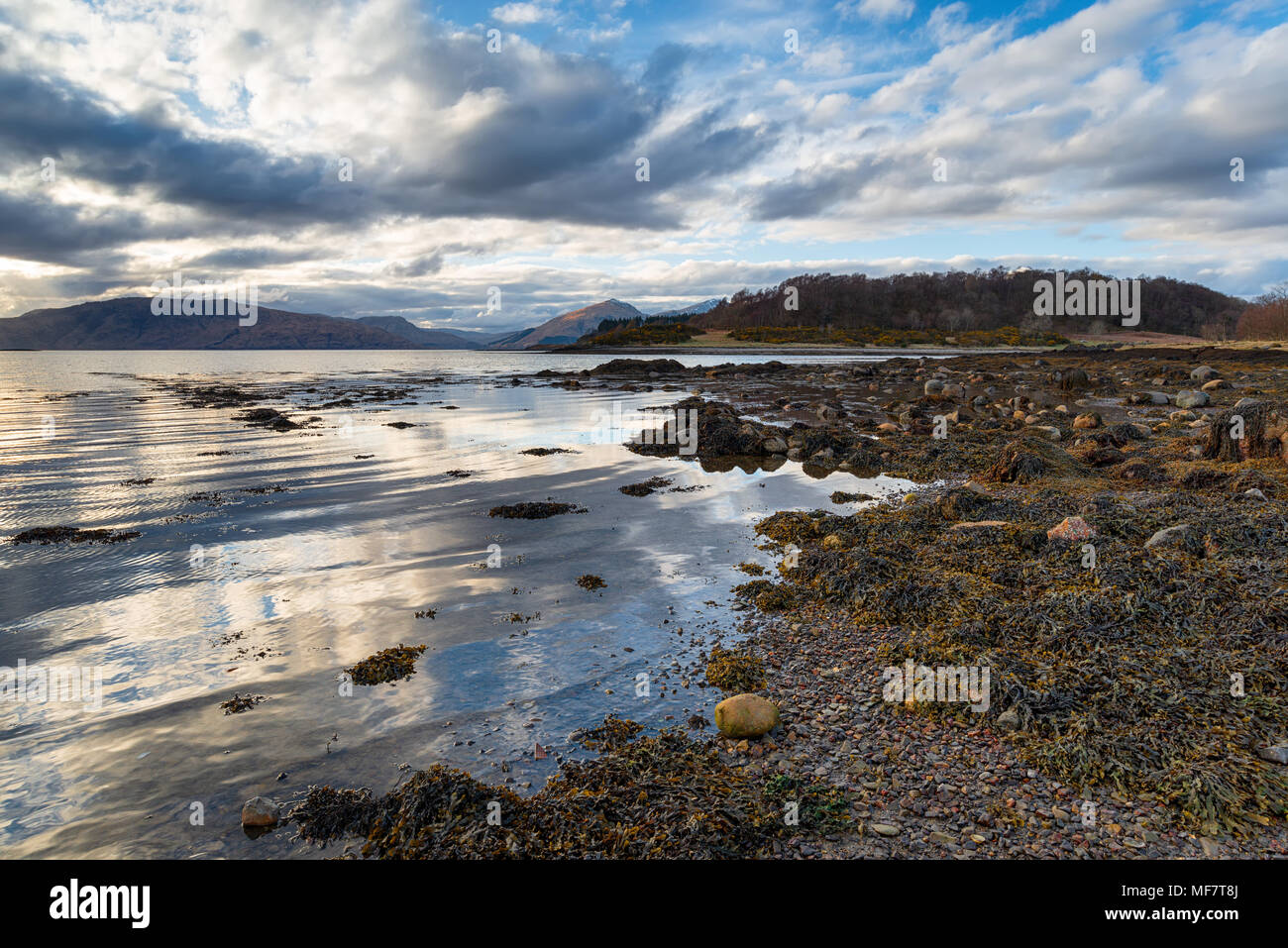The shores of Loch Linnhe near Appin in Scotland - Stock Image