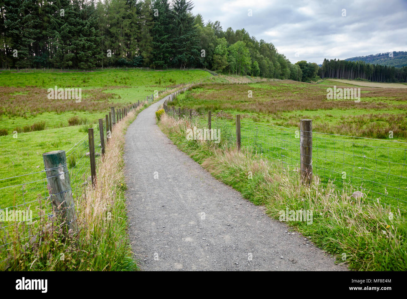 Summer rural landscape with public rights of way brideway or footpath going along pasture in Scotland UK - Stock Image