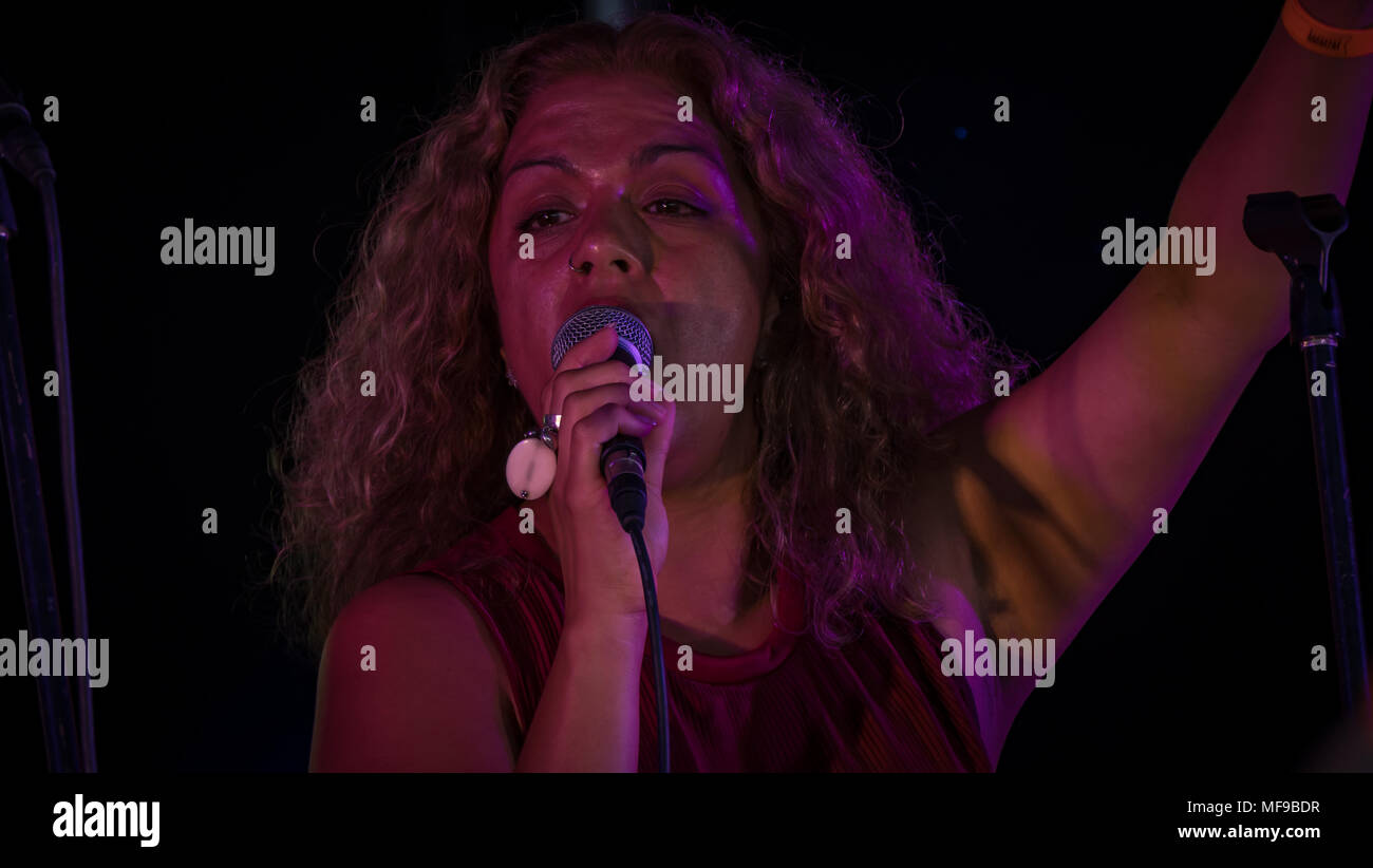 Female Singer Performing at Victorious Festival 2016 - Portsmouth UK Stock Photo