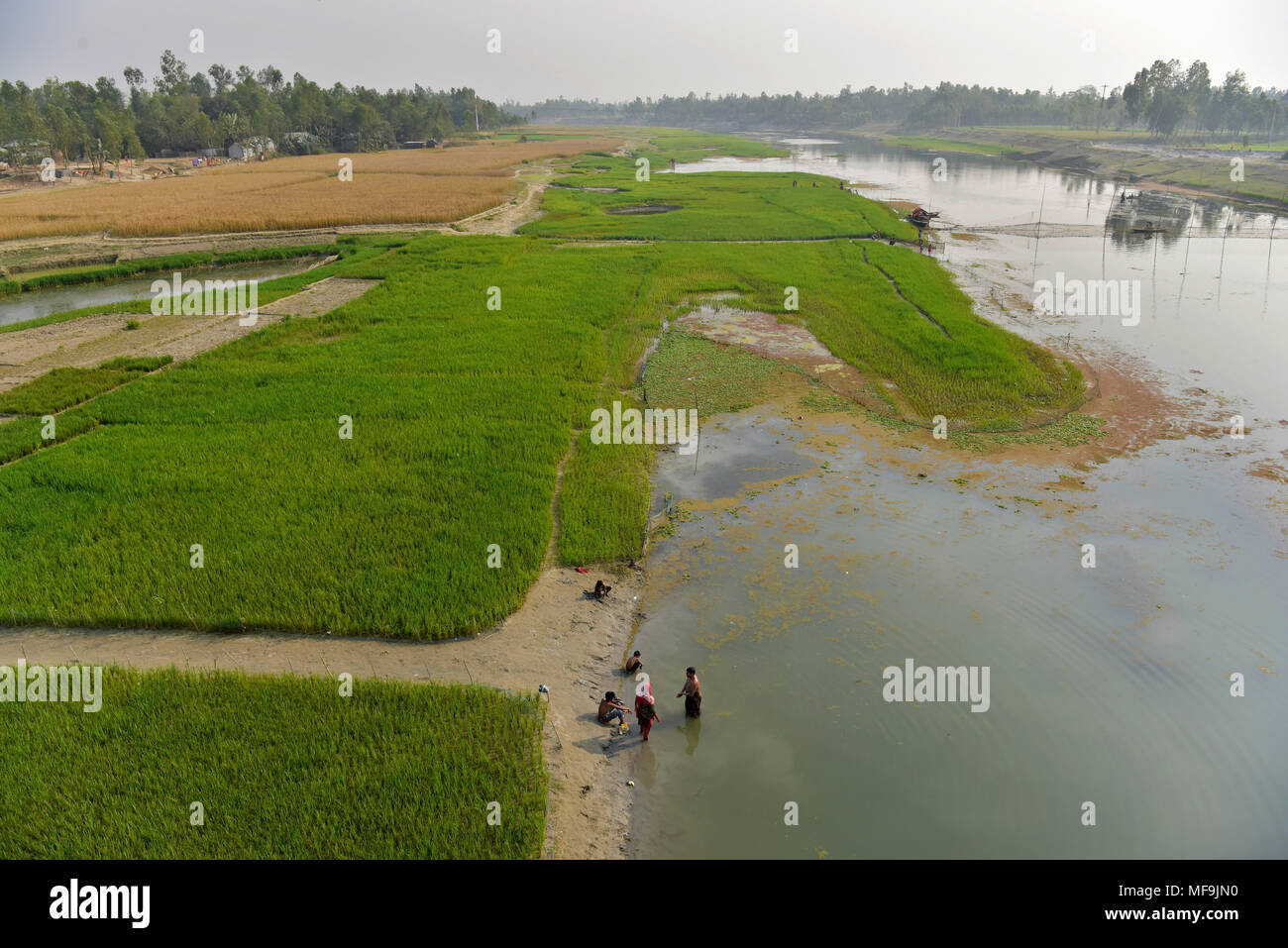 Bogra, Bangladesh - February 28, 2017: The Bangali River is embracing a slow death due to lack of dredging and/or as a consequence of human encroachme - Stock Image