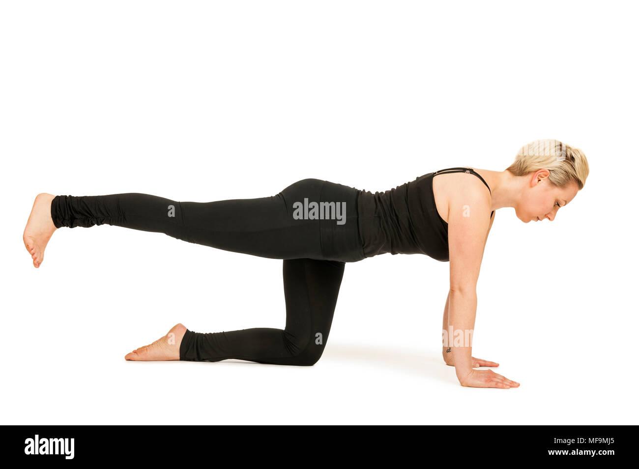Seitliche Ganzkörper-Ansicht einer jungen Frau vor weißen Hintergrund die Yoga-Übung 'Katze' (Majariasana) zeigend. - Stock Image