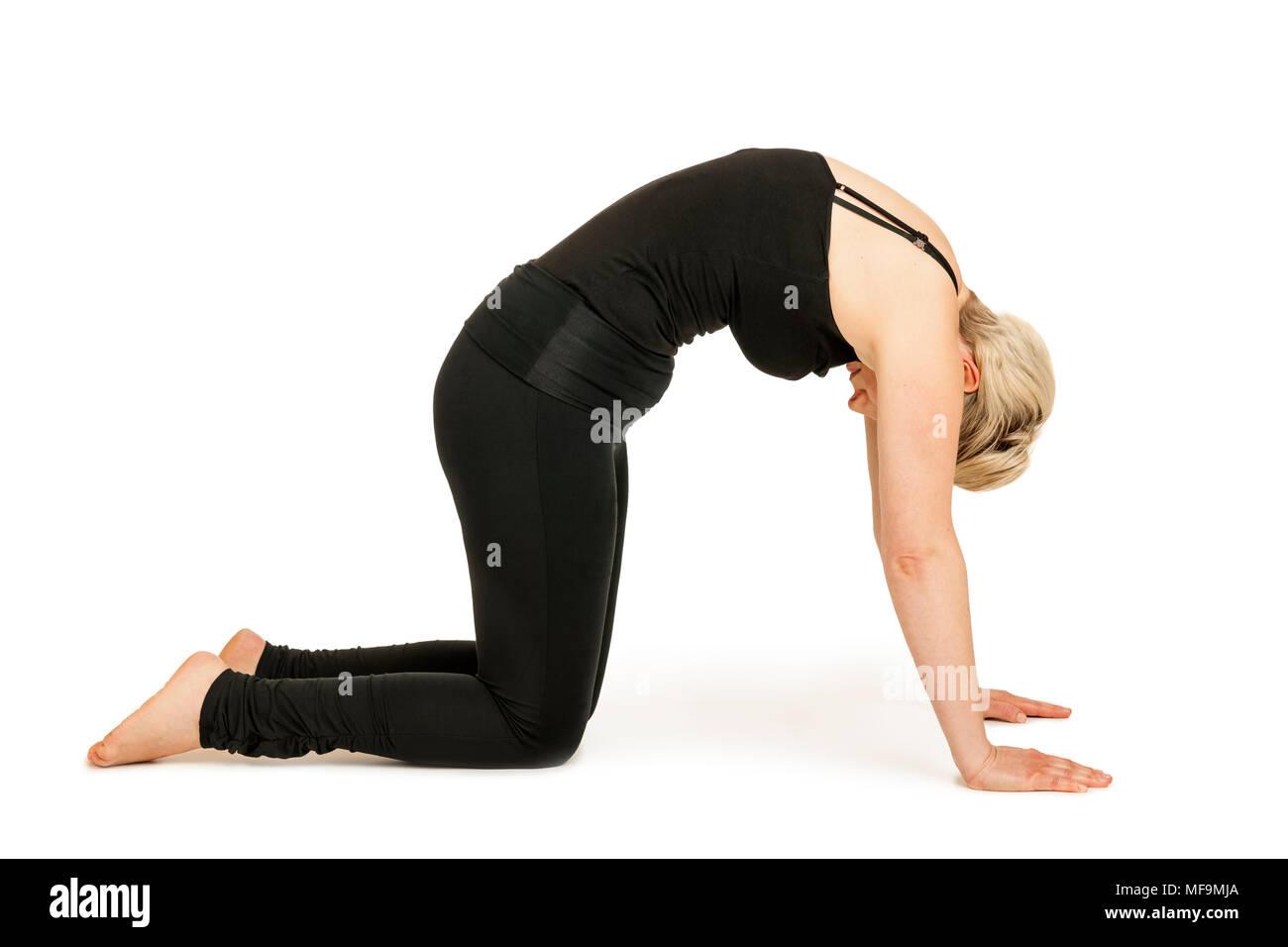 Seitliche Ganzkörper-Ansicht einer jungen Frau vor weißen Hintergrund die Yoga-Übung die Katze (Marjaryasana) zeigend. - Stock Image